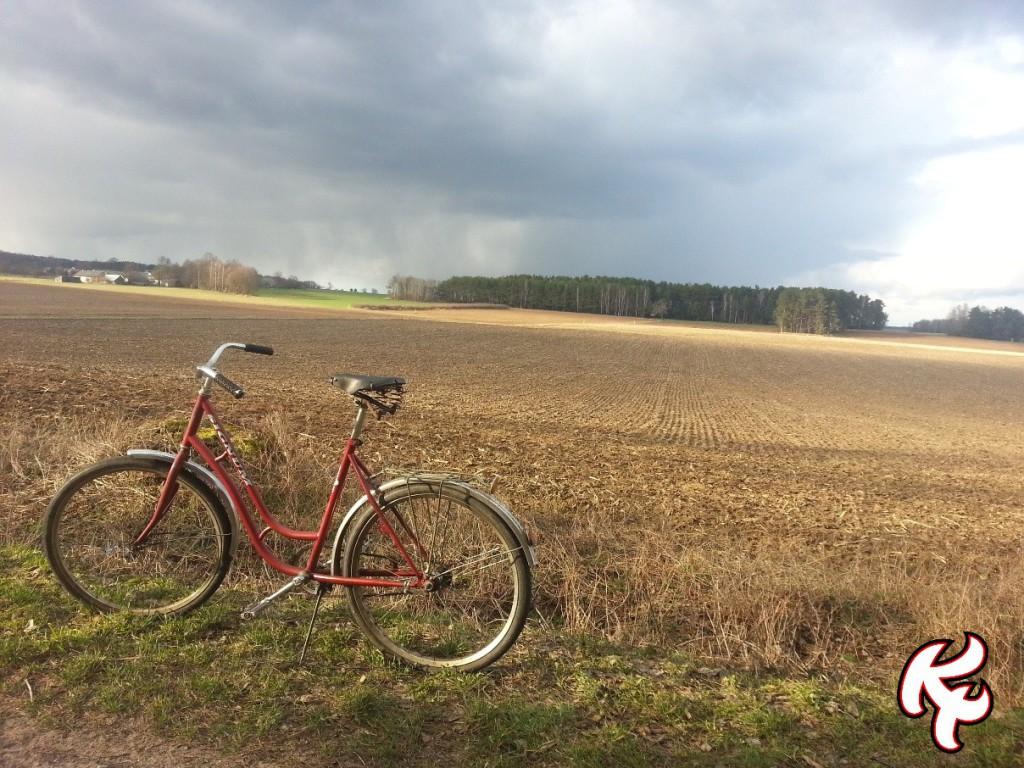 Wielkanoc rower 14