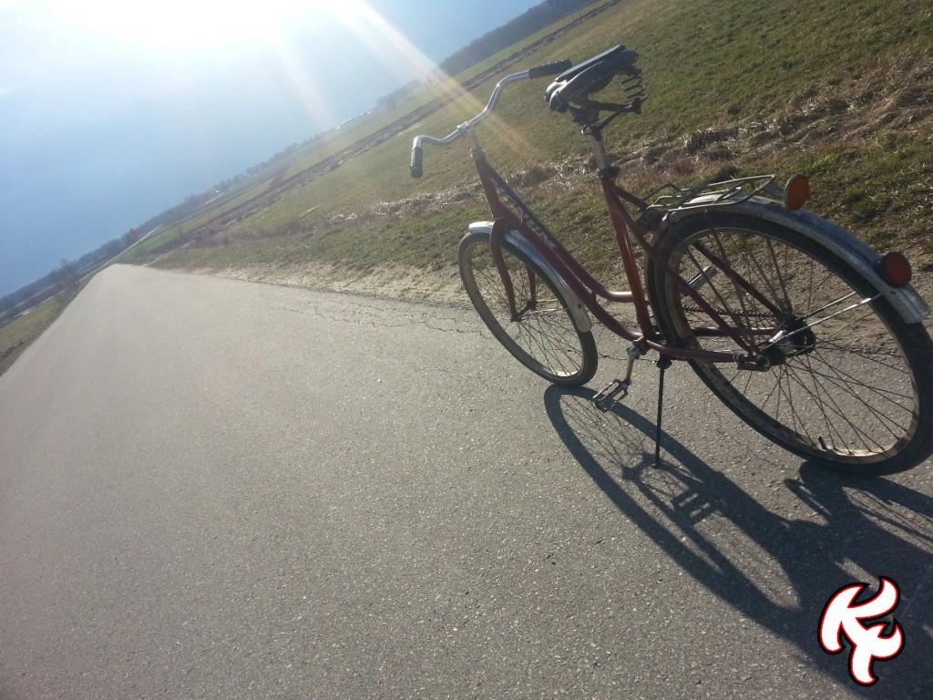 Wielkanoc rower 2